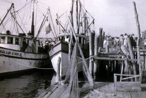 Mayport early 50s shrimp boats