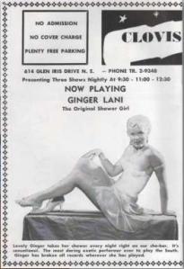 Ginger Lani